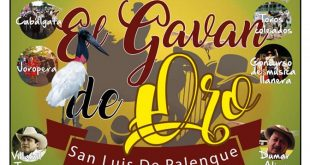 Festival gavan de oro, Archivo 2019